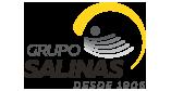 Logotipo de Grupo Salinas